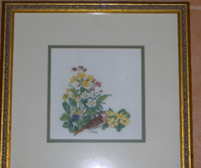 Thrush with Flowers (Framed Picture)